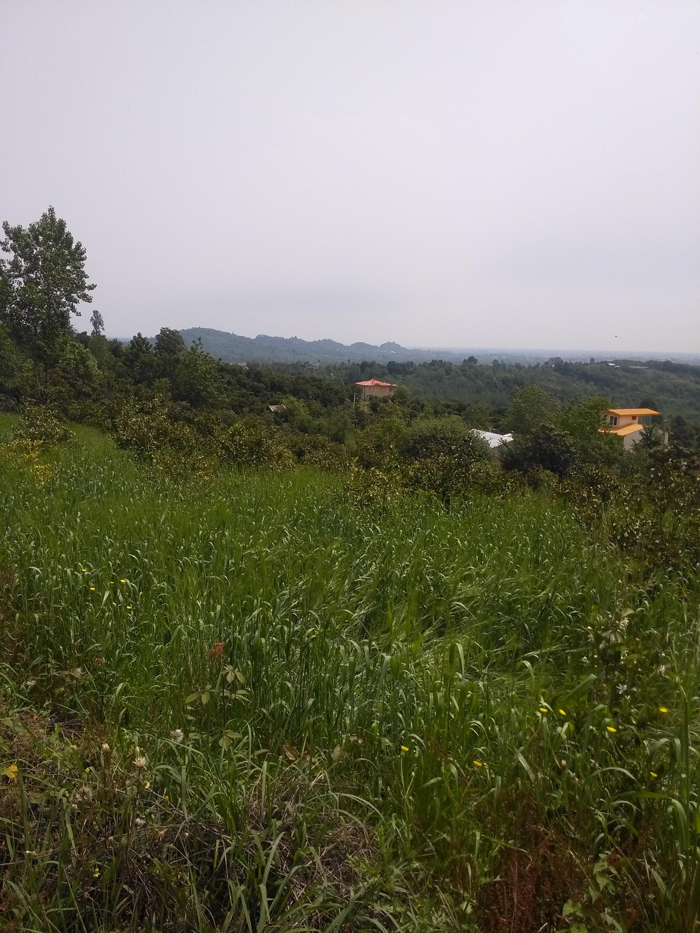 زمین با کاربری مسکونی